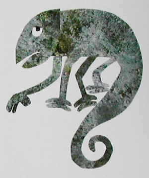 El camaleón camaleónico