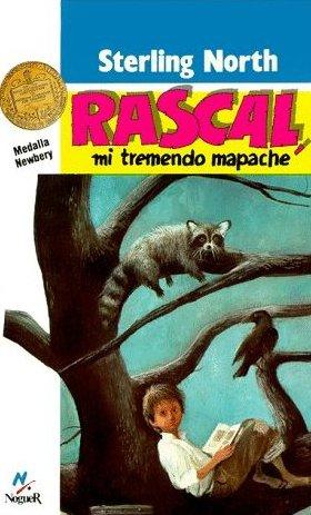 Rascal, mi tremendo mapache