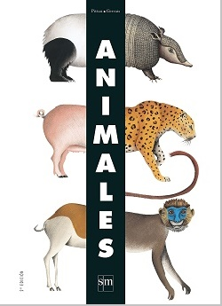 Animales, Pájaros y Océanos